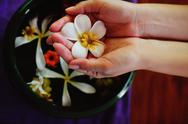 Stock Photo of female hand and flower in water