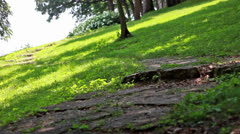 A Winding Path Stock Footage