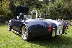 shelby cobras at the los angeles arboretum - stock photo