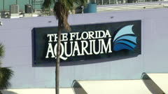 Looking down at the Florida Aquarium Stock Footage