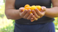 Giving away apricots Stock Footage