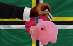 Dollar into piggy rich bank and  national flag of dominica Stock Photos