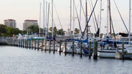 Stock Video Footage of Static shot sailboats in Tampa Bay