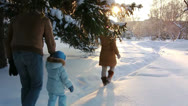 Stock Video Footage of Young couple walking with a child in the woods