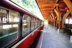 Mt. ali forest railway Stock Photos