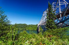 Vegetation and Bridge - stock photo