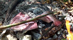 Grilling fish on the coals at nature. Stock Footage