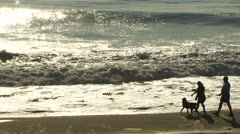 Couple with dog walks at beach at Carmel by the Sea - stock footage