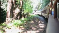 Side view of an old fashioned train, handheld Stock Footage