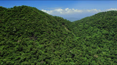 Flyby Tropical rain forest covered hill tops Stock Footage