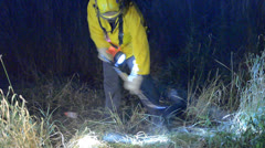 Brush Fire At Night - stock footage