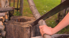To saw firewood, a tree trunk the hand saw Stock Footage