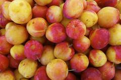 Red plums Stock Photos