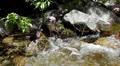 Yosemite LM105 Cascade Falls HD Footage