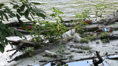Water pollution / garbage in river Stock Footage