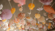 Stock Video Footage of curtains of mollusk shells