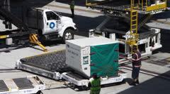 Airport Baggage Handlers Stock Footage