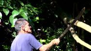 Stock Video Footage of Chopping Wood, Trees, Cutting, Lumberjacks
