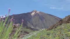 Teide, Tenerife, Canary islands, Spain Stock Footage