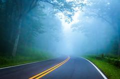 Dense fog on skyline drive in shenandoah national park, virginia. Stock Photos