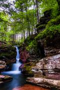 adam's falls and tall trees in rickett's glen state park, pennsylvania. - stock photo