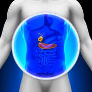 Medical X-ray Scan - Pancreas / Gallbladder - stock photo