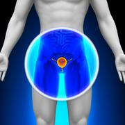 Medical X-Ray Scan - Bladder - stock photo