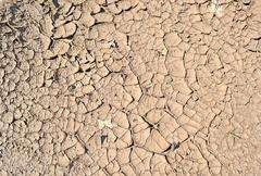 drought, grunge dry ground, stress environment. - stock photo