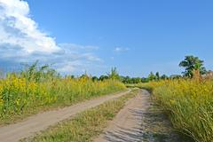 Ground zigzag road in the meadow before thunderstorm, blue sky. Stock Photos