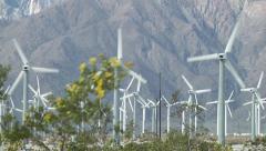San Gorgonio Pass Wind Farm with desert flowers Stock Footage