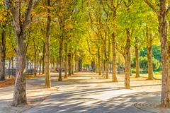 Stock Photo of Calm park near the Champs Elysess, Paris, France