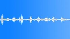 Blackbird Song Sound Effect