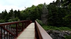 Manuels River Bridge Stock Footage