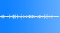 Flip Flops Through Grass Sound Effect