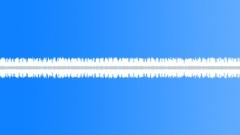 Crickets 3 - sound effect