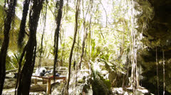 Sacred Mayan Cenote in Yucatan Peninsula, Mexico - stock footage