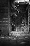 Black and White Hallway - stock photo
