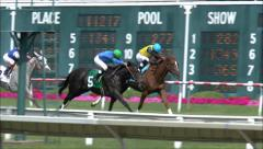 Horse race finish line - stock footage