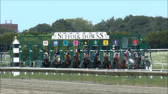 Horse race starting gate Stock Footage
