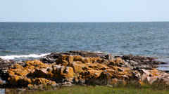 The rocky coast at Bornholm, Denmark Stock Footage