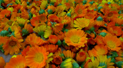 Dried marigold flowers to zoom in Stock Footage
