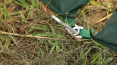 Tent stake pound in Stock Footage