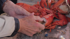 A fresh lobster dinner being prepared Stock Footage