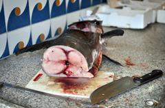 Slice of swordfish - stock photo
