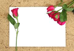Rose and blank paper Stock Photos