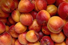 Stock Photo of fresh and tasty natural apricot.