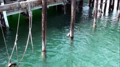 Deep-Sea Water Under Ocean Pier in Monterey Bay Stock Footage