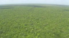 Areal View of Landing into Jungle Stock Footage
