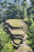 Main terraces of ancient Ciudad Perdida archeological site Stock Photos