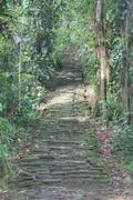 Indigenous stone stairs in Ciudad Perdida archeological site Stock Photos